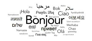 Run our monitoring software in 14 different languages